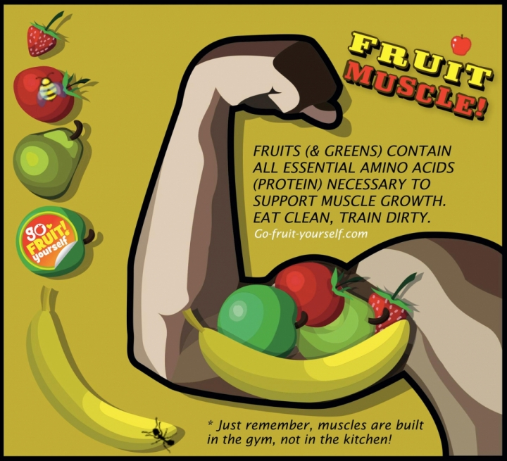 food-fruit-muscle-fruits-greens-contain-all-essential-amino-acids-protein-necessary-to-support-muscle-growth-eat-clean-train-dirty-1354